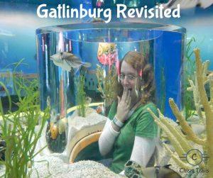 Revisting Gatlinburg