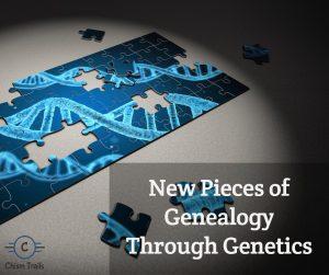 genealogy chism