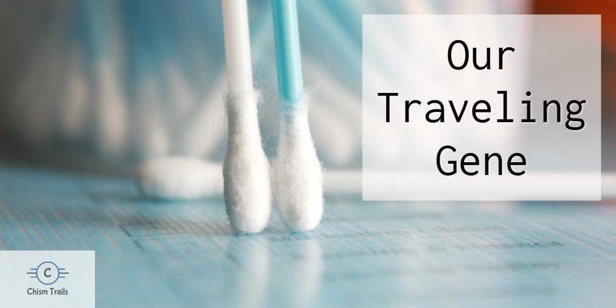 gene travel